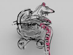 Pet Rat 2